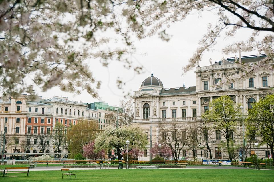 Картинки по запросу vienna spring