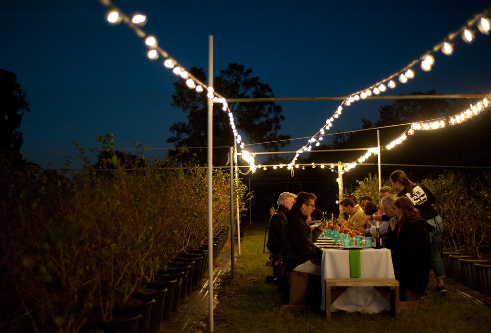 Farm to Table Dinner 16