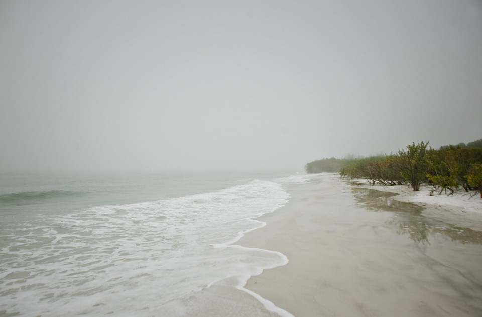 Foggy Florida1