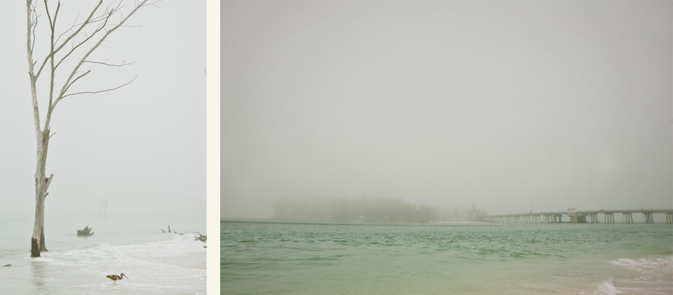 Foggy Florida6